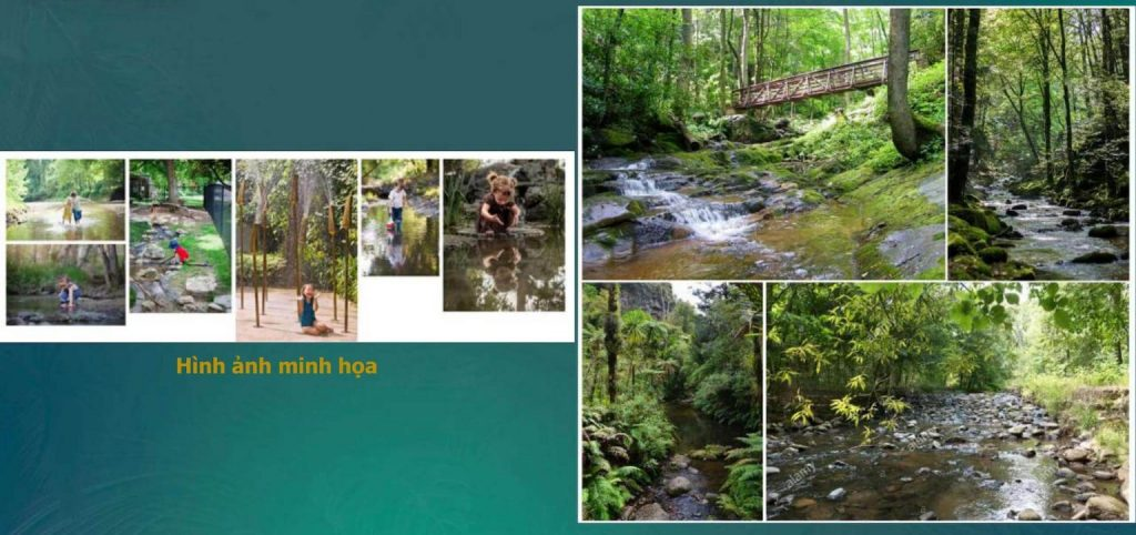 Công viên Forest Creek trong hệ thống công viên Tropical